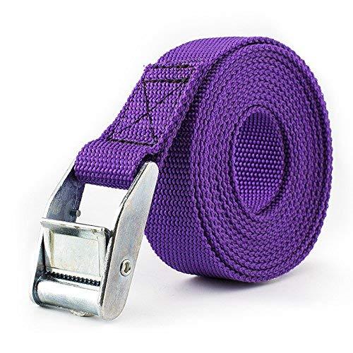 mit Schnalle violett 6 Farben Zurrgurt bis zu 600 kg Spanngurt 1 Packung L/ängen 2 bis 3 m