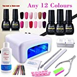 (Pick Any 12 Colors) Nail Art Polish Top Base 36W UV Lamp Gel Manicure Kit Soak Off Cleanser Plus Files Removers Buffer Nipper Push Wipes Stipes Roll Gift Set DIY by FairyGlo