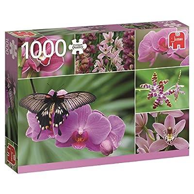 Jumbo 618354 Puzzle Orchidee