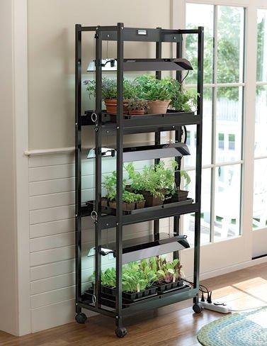 Compact Grow Light Stand 3-Tier Sunlite174; Garden High Output T-5 Bulbs