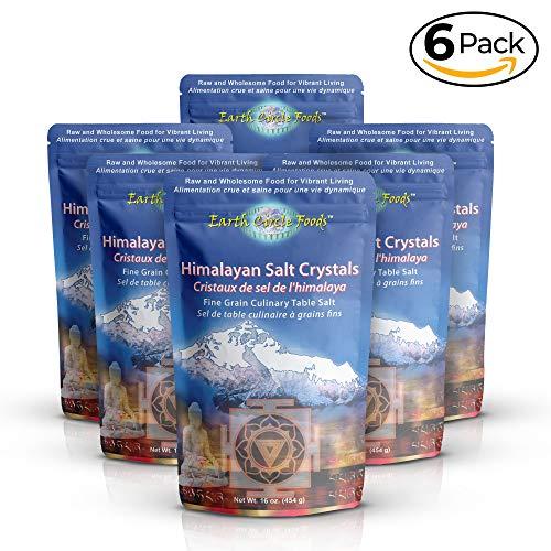 Earth Circle Organics Premium Himalayan Pink Fine Grain Salt, Pure Culinary Grade - Kosher, Nutrient and Mineral Dense - Excellent Health Benefits - 6lb