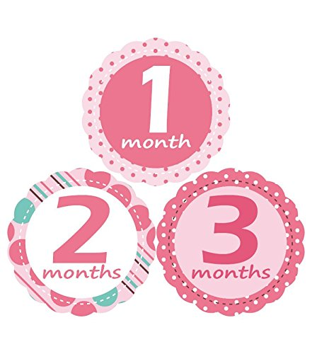 'MuchMore' Baby Monthly Stickers for Gir..