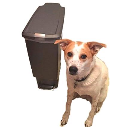 amazon com locking trash can dog proof 10 gallon kitchen rubbish rh amazon com tall kitchen trash can with locking lid
