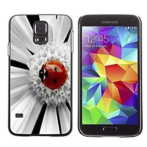 Dragon Case - FOR Samsung Galaxy S5 - Beetle fell asleep - Caja protectora de pl??stico duro de la cubierta Dise?¡Ào Slim Fit