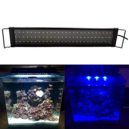 24 by 12 led hood and light - 2
