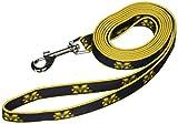 NCAA Michigan Wolverines Dog Leash, Small  - New Design