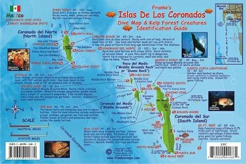 Islas De Los Coronados Mexico Dive Map & Kelp Forest Creatures Guide Franko Maps Laminated Fish Card