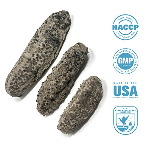 SB Organics Carribbean Badionotus Small - Wild Caught Sea Cucumber Dried All Natural Nutritious - 8 oz.