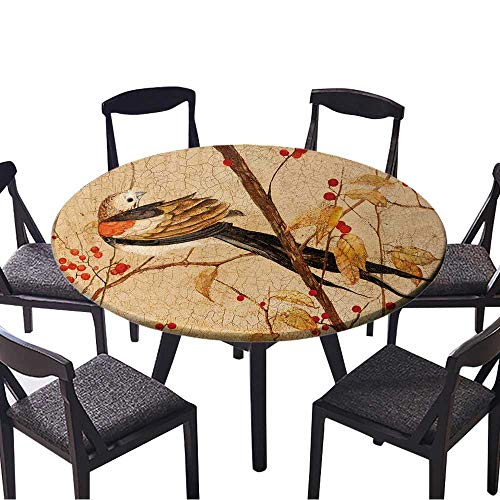 (Youdeem-tablecloth Round Tablecloths Painting.Colorful Bird on Branches with red Berries or Everyday Dinner, Parties 59
