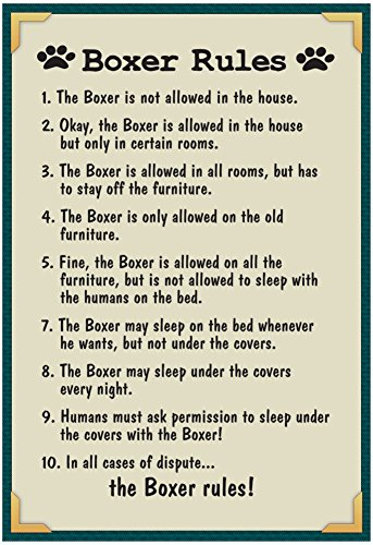 Boxer House Rules Poster
