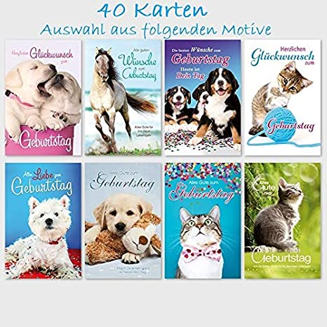50 Biglietti Di Auguri Di Compleanno Simpatici Animali 11 5 X 17 5