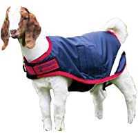 Amazon Best Sellers Best Horse Blankets Amp Sheets