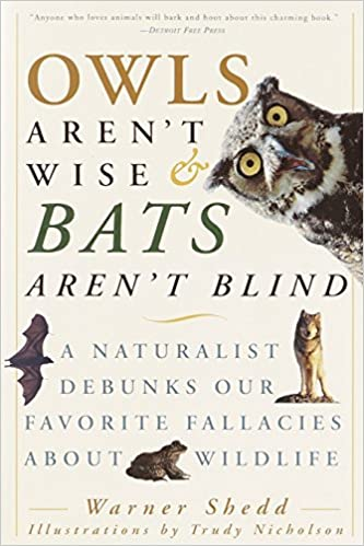 Owls Aren T Wise Bats Aren T Blind A Naturalist Debunks Our