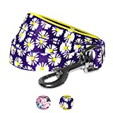 Blueberry Pet 2 Patterns Loving Daisy Prints Dog Leash with Soft & Comfortable Handle, 4 ft x 1'', Large, Leashes for Dogs