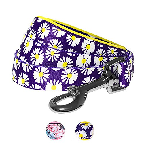 erns Loving Daisy Prints Dog Leash with Soft & Comfortable Handle, 5 ft x 5/8, Small, Leashes for Dogs (Daisy Dog Harness)