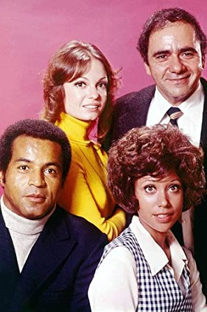 Karen Valentine And Michael Constantine And Lloyd Haynes And Denise  Nicholas In Room 222 24x36 Poster