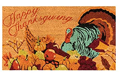 Natural Coir Door Mat - Happy Thanksgiving Indoor Outdoor Welcome Doormat, Easy Clean, PVC Anti-Slip Backing Front Entry Mats, Holiday Turkey, Pumpkin, Fruits Design, Brown, 17.2 x 30 x 0.5 Inches