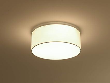 Luces LED de techo para baño, interior, para cocina, pasillo, oficina, escalera, comedor: Amazon.es: Iluminación