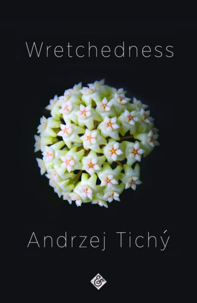 Wretchedness: Tichý, Andrzej, Smalley, Nichola: 9781911508762: Amazon.com:  Books