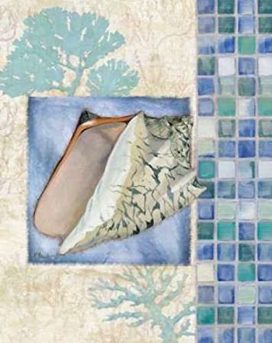 - Posterazzi Mosaic Shell Collage III Poster Print by Paul Brent (24 x 30)