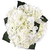 Soledi Artificial Silk Fake 5 Heads Hydrangea Beautiful Flower Bunch Bouquet Home Hotel Wedding Party Garden Floral Decor -- Milk White