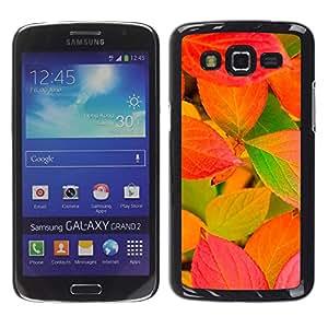 Calabaza Hojas de colores - Metal de aluminio y de plástico duro Caja del teléfono - Negro - Samsung Galaxy Grand 2