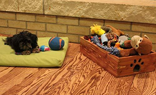 Dynamic Accents Small Pet Toy Box - Cedar