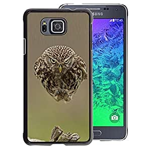 A-type Arte & diseño plástico duro Fundas Cover Cubre Hard Case Cover para Samsung ALPHA G850 (Owl Cute Bird Blurry Feathers Baby Spring)