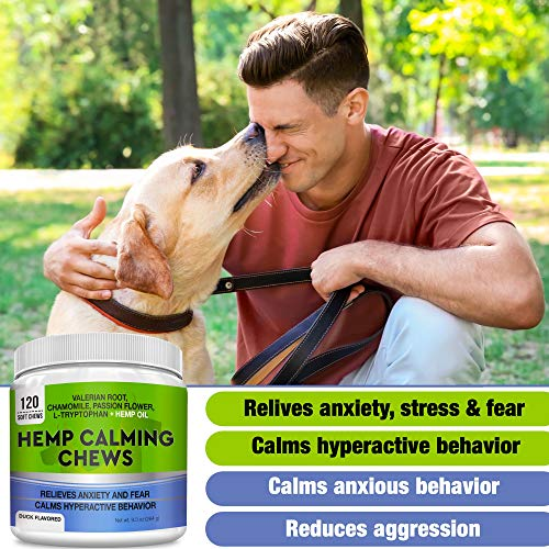 51kZN6k GvL - GOODGROWLIES Calming Hemp Treats for Dogs - Made in USA with Hemp Oil - Anxiety Relief - Separation Aid - Stress Relief During Fireworks, Storms, Thunder - Aggressive Behavior, Barking - 120 Chews