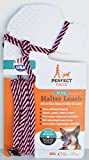 Perfect Pace Halter Leash (Pink/Brown, 6 Foot)