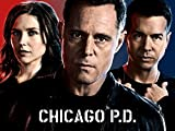Chicago Pd, Season 2