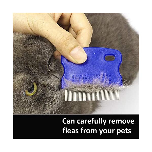 2 Pack Pet Dog Cat Flea Comb Tear Eye Stain Remover Combs, Hair Brush Effectively Clean and Removes Tangles, Dirt, Fleas… Click on image for further info. 4