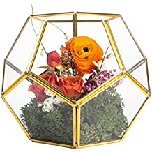 Brass Copper Gold Pentagonal Dodecahedron Ball Geometric Glass Terrarium Centerpiece Handmade Candle Holder for Wedding Table Top Decoration