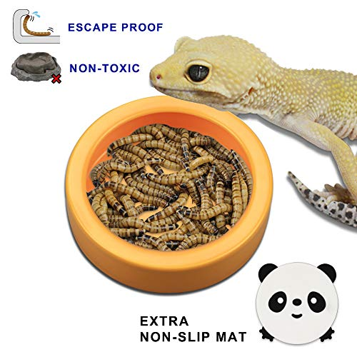 (TDPET Ceramic Mini Reptile Worm Dish with Non-Slip Mat,Lizard Escape Proof Feeding Bowl Circular (M,)