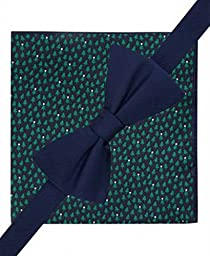 Tommy Hilfiger Men\'s Bow Tie and Pocket Square Set (One Size, Dot and Vertical - Blue/Green)