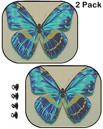 MSD Car Sun Shade Protector Block Damaging UV Rays Sunlight Heat for All Vehicles, 2 Pack Image 2619171 Morpho Cypris Butterfly Specimen in The Cabinets