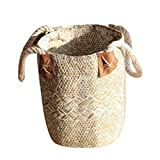 Storage Basket Bag Wicker Weaving Storage Basket with Handle Toys Flowerpot Basket Laundry Holder Organizer Bag Decorations for Home, Coffee Bars, Shops(19x21x25cm,White)