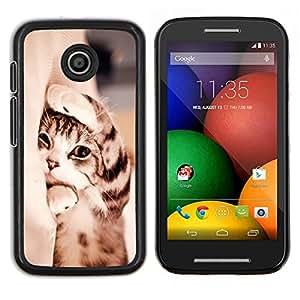Gatito de pelo corto Manx Sleepy Cat Paw- Metal de aluminio y de plástico duro Caja del teléfono - Negro - Motorola Moto E / XT1021 / XT1022