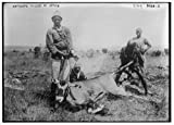 1900 Photo Antelope killed in Africa