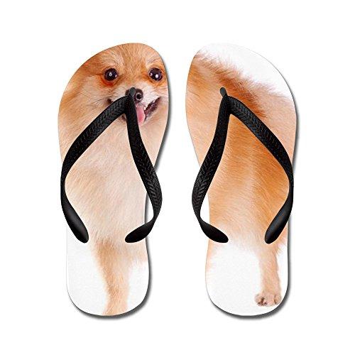 Cafepress Pomeranian Dog - Flip Flops, Grappige String Sandalen, Strand Sandalen Zwart