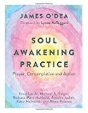 img - for Soul Awakening Practice: Prayer, Contemplation and Action book / textbook / text book