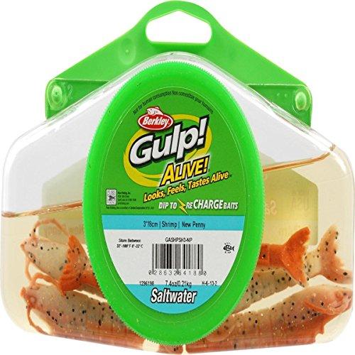 Gulp! Alive! Shrimp (Renewed)