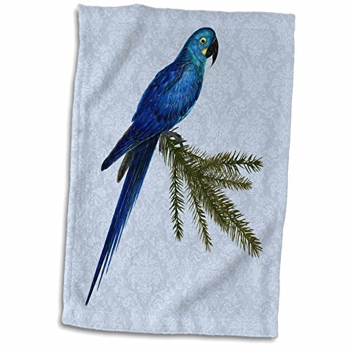 (3D Rose Hyacinth Macaw Parrot Vintage Art with Blue Damask Hand Towel 15
