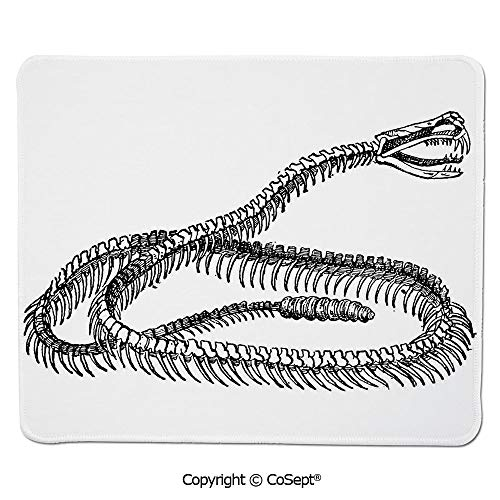 Ergonomic Mouse pad,Black and White Reptile Skeleton Illustration Moving on The Ground Wild Exotic Snake,for Laptop,Computer & PC (7.87