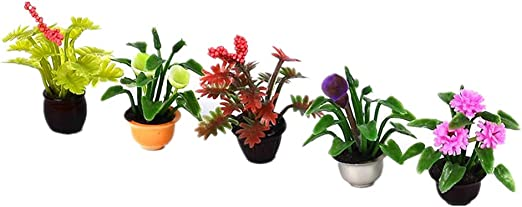 perfeclan 5pcs Mini Jardín Maceta Planta para Decoración de Casas de Muñecas - 1:25: Amazon.es: Jardín