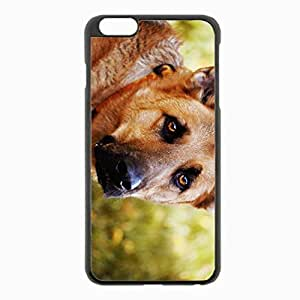 iPhone 6 Plus Black Hardshell Case 5.5inch - dog eyes sadness Desin Images Protector Back Cover