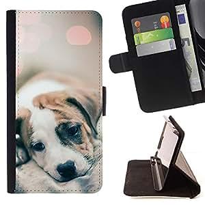 Momo Phone Case / Flip Funda de Cuero Case Cover - Blurry Mignon Lumières Baby Dog - Samsung Galaxy S3 III I9300