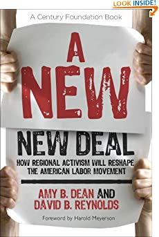 A New New Deal: How Regional Activism Will Reshape the American Labor Movement (A Century Foundation Book) (Paperback)