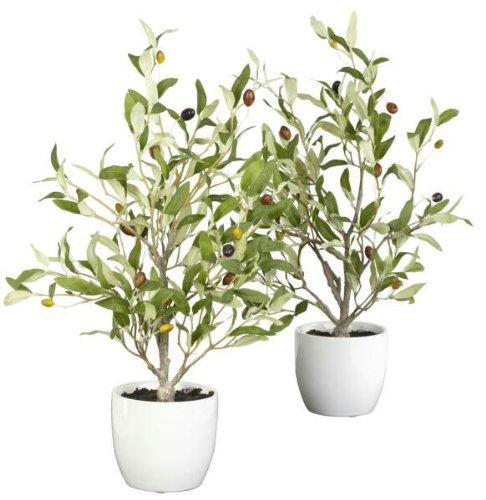 18 Inch Olive Silk Tree W/Vase Set Of 2 [Kitchen] ()