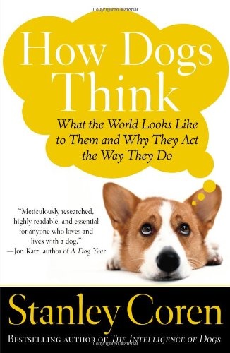 How-Dogs-Think-What-the-World-Looks-Like-to-Them-and-Why-They-Act-the-Way-They-Do